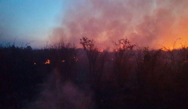 150 هکتار از اراضی شبهجزیره میانکاله طعمه آتش شد...