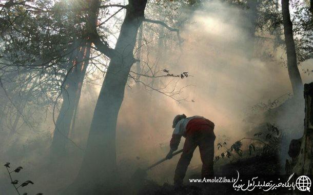 گزارش تکمیلی آتش سوزی جنگلهای رزکه