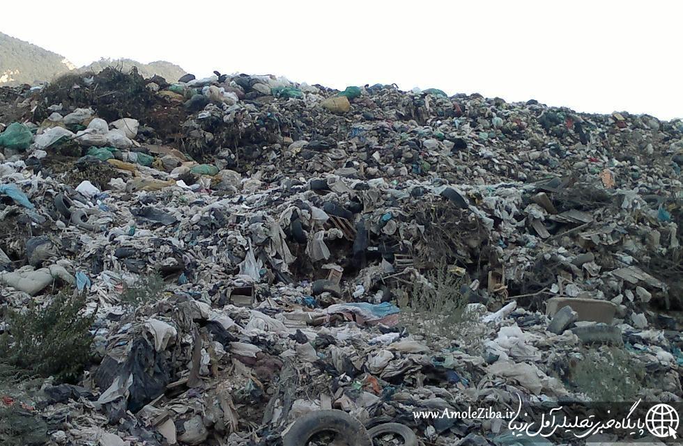 تذکر جدی امام جمعه آمل به شهرداری در خصوص معضل زباله و سگهای بلاصاحب