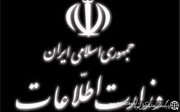 وزارت اطلاعات: برخی از